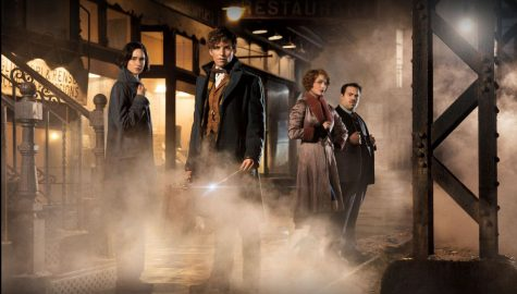 Fantastic Beasts exceeds fans' expectations