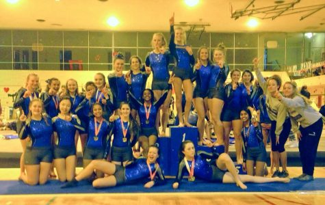 The Brookfield Gymnastics team rose to great heights this 2015-16 season, dominating along the way.