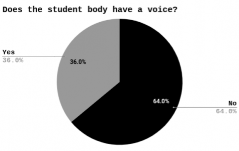 Students vote on volume of voice from student body