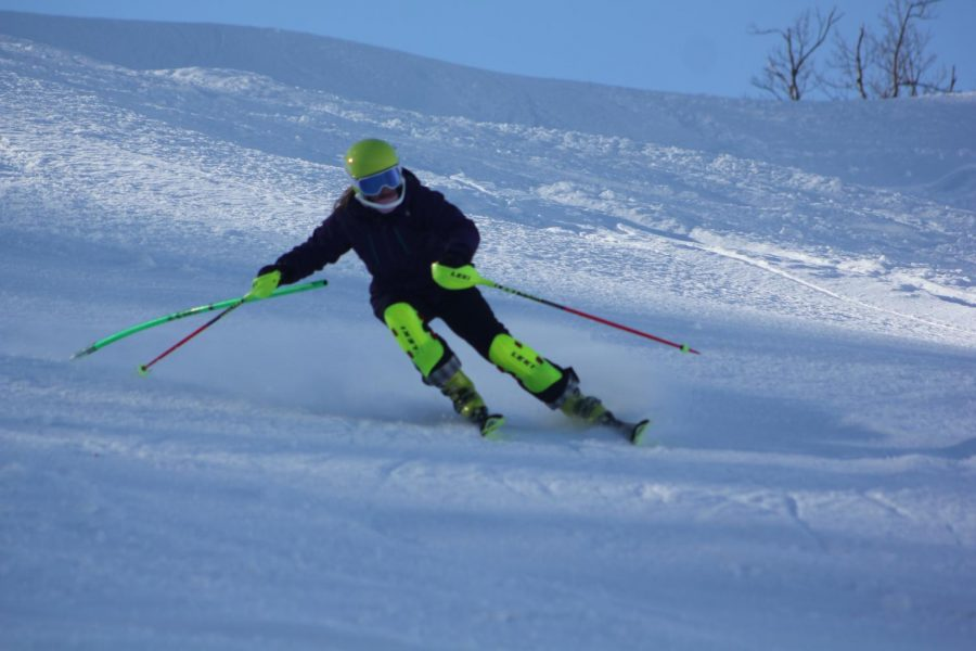 Ski Team members tackle slopes at state